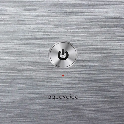 AQUAVOICE 'Early Recordings' 2CD