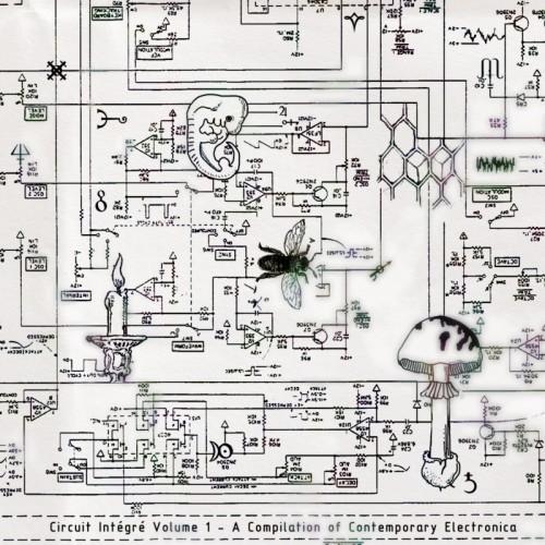 V/A - Circuit intégré Vol. 1 DAT RAYON / FOQL / RNA2 /...