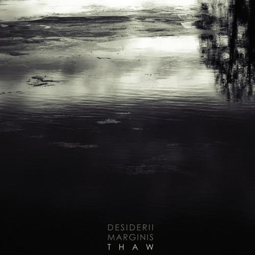 DESIDERII MARGINIS 'Thaw' CD