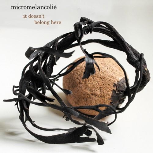 Micromelancolié 'It Doesn't Belong Here' CD