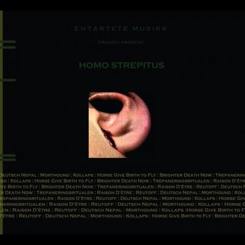 V/A - Homo Strepitus (Deutsch Nepal)