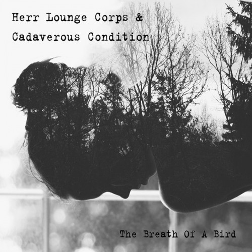 HERR LOUNGE CORPS & CADAVEROUS CONDITION – The Breath Of...
