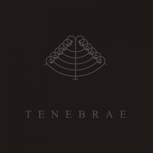 MAJDANEK WALTZ / SAL SOLARIS - Tenebrae CD