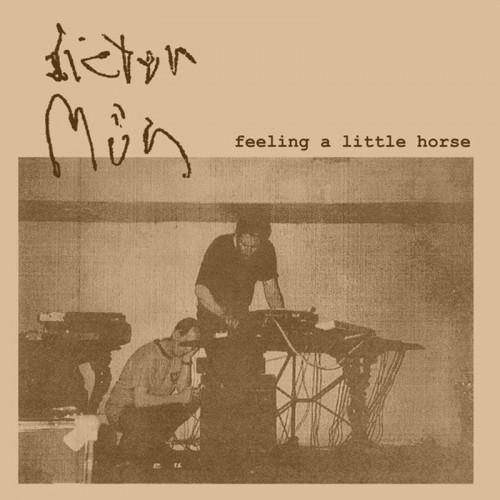 Dieter Müh 'Feeling a Little Horse' CD