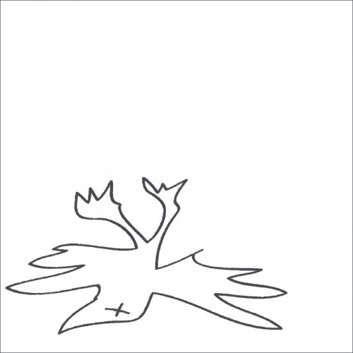 O PARADIS - Tierra Embrujada CD