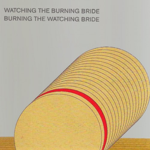 Asmus Tietchens / Terry Burrows - Watching the Burning...