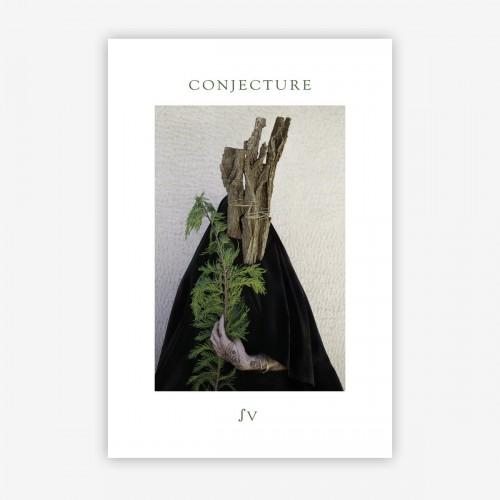 CONJECTURE -  ∫V MC