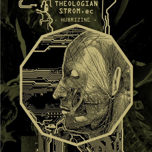 THEOLOGIAN  & STROM.ec - Hubrizine CD