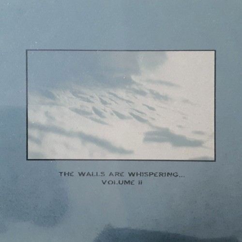 V/A - THE WALLS ARE WHISPERING II CD