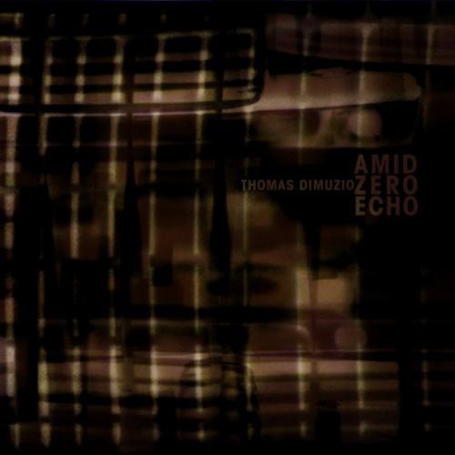 """Thomas Dimuzio - Amid Zero Echo 2 x 10"""""""
