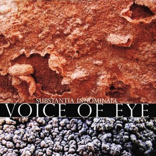 "VOICE OF EYE - Substantia Innominata 10"""