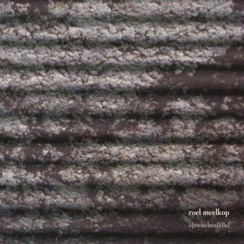Roel Meelkop – 5 (Zwischenfälle) CD