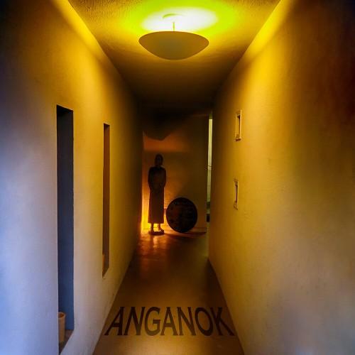 THE RESIDENTS -  Anganok CD