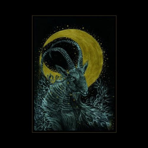 MONOCUBE - The Rituals CD