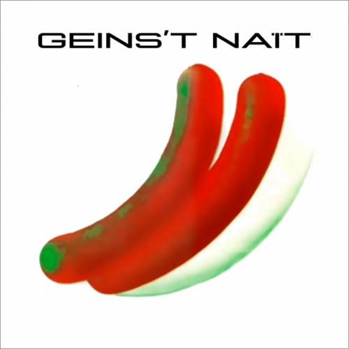 GEINS'T NAIT - GN  (CD)